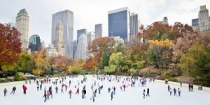 Ice skating in New York ©Stuart Monk/shutterstock.com